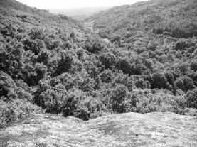 Valle de los Trolls - Frontera Dagavan (Vista desde la Cueva)