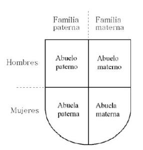Representación del linaje en un escudo