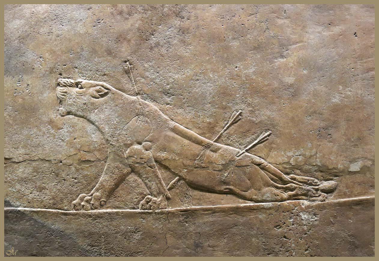 Assurbanipal a la caza del leon-Pal Assurbanipal Ninive-British Museum 1